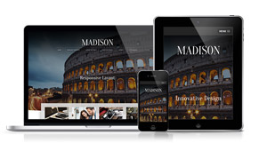 Madison - A Visually Stunning and Attractive Design